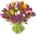 tulipes multicolores livraison bruxelles botanica fleuriste