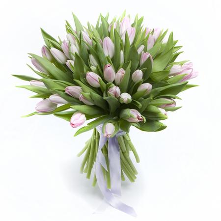 livraison de tulipes à bruxelles