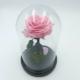 rose liophilisée ou stabilisée rose livraison