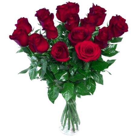 rose rouge amour livraison bruxelles uccle