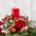 fleurs livraison Bruxelles Forest Ixelles Saint-Gilles Etterbeek Rhode-saint-genèse Bruxlles