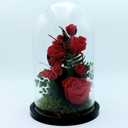 roses rouges livraison Bruxelles saint-gilles uccle ixelles etterbeek rhode-saint-genèse linkebeek drogenbos schaerbeek evere boisfort auderghem molenbeek saint-josse jette