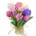 Botanica livraison bruxelles fleurs uccle ixelles linkebeek saint-gilles etterbeek schaerbeek evere anderlecht rhode-saint-genèse drogenbos sint-pieters-leeuw