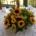 décoration florale pour mariage à bruxelles salle location
